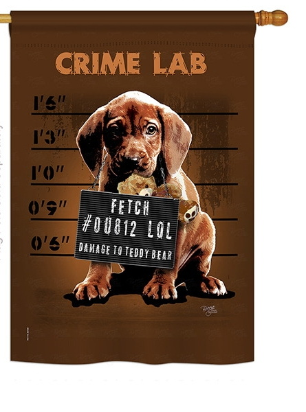 Crime Lab House Flag