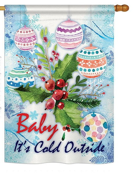 Baby It's Cold House Flag