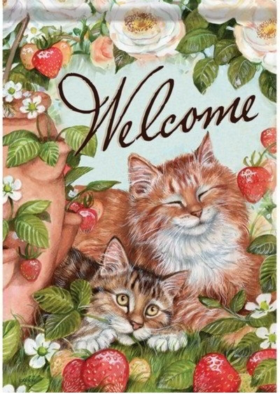 Strawberry Kitties Dura Soft House Flag