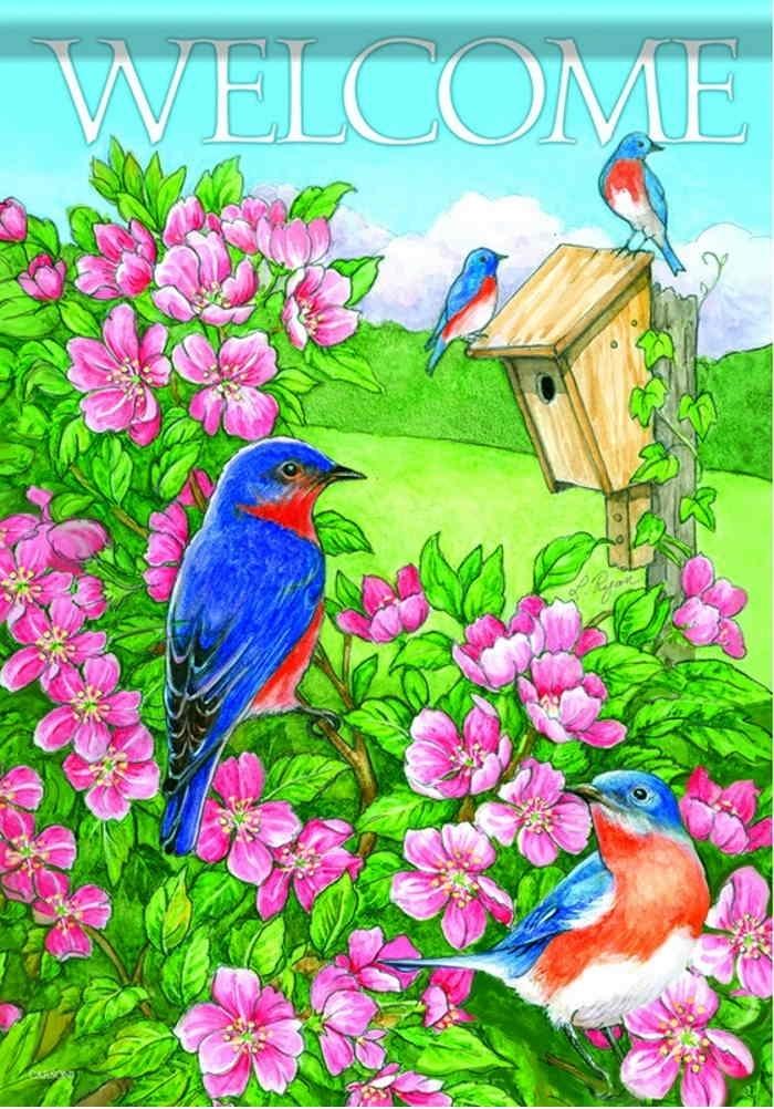 Bluebird Beauty House Flag