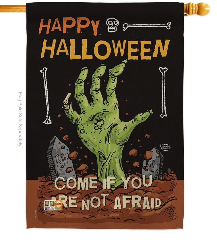 Come In If Not Afraid House Flag