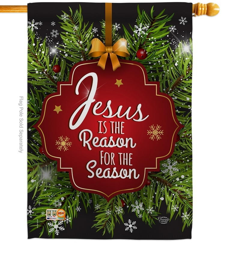 Jesus Is The Reason Decorative House Flag