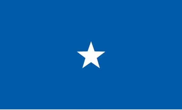 3' x 5' 1 Star Air Force High Wind, US Made Flag